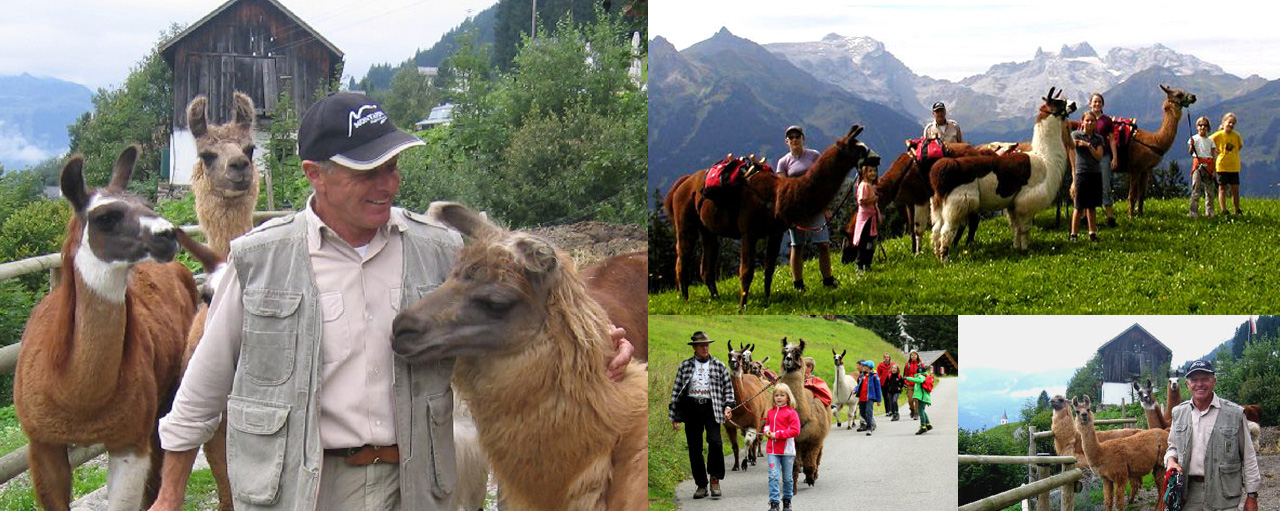 Lama-Trekking mit Llamero Horst