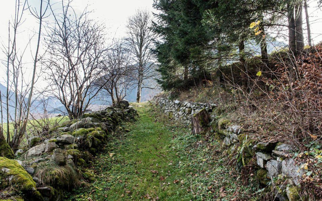 Via Valtellina