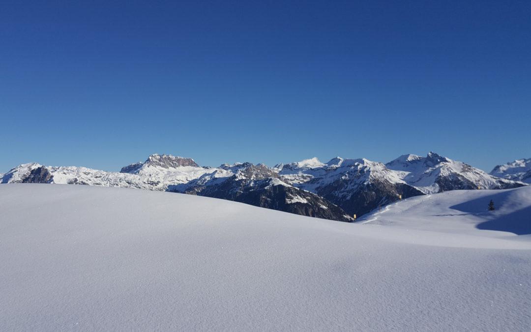Winterwandern und Schneeschuhwandern